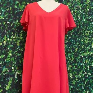 NWT Caramela Fuchsia Pink Ruffle Sleeve Dress XL